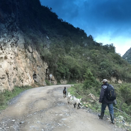Walking to work with your friends - Colombia